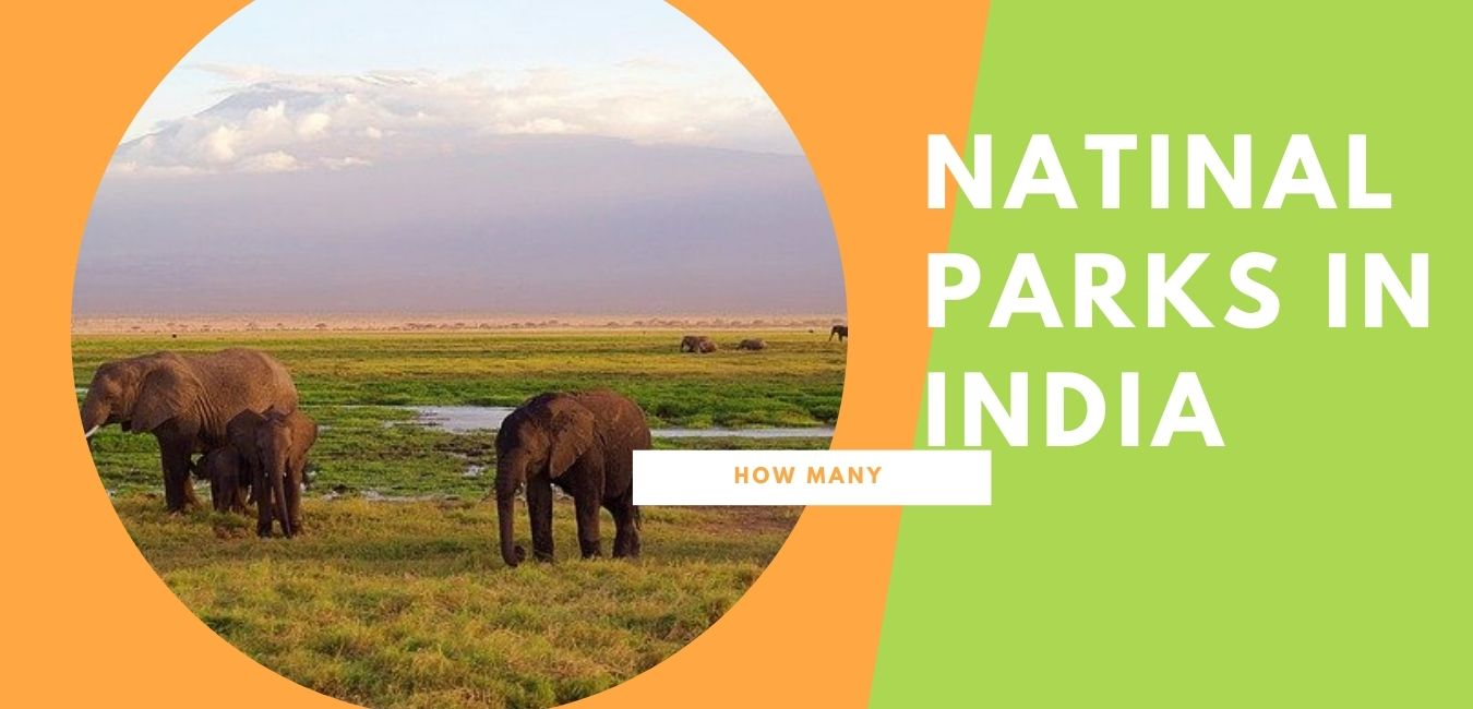 How many National Parks are there in India as of 2015